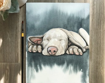 "11""x14"" Original Watercolor Pet Portrait ""Slumber"""