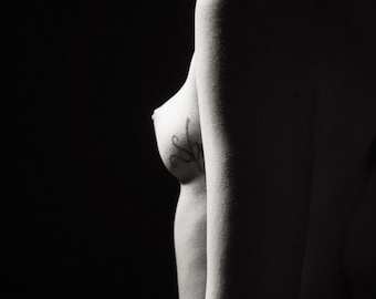 Jenna Citrus Nude No. 1519 (5x7)