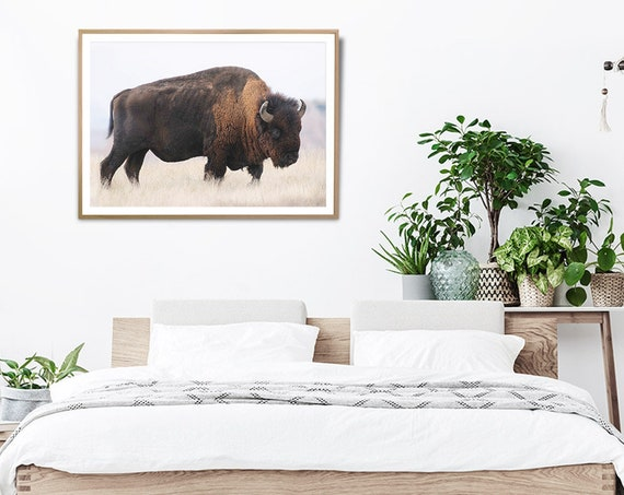 Bison Buffalo Wall Art Print, Digital Download, Photography, Printable Poster, Buffalo Photo, Large Bison Photography, Landscape Print