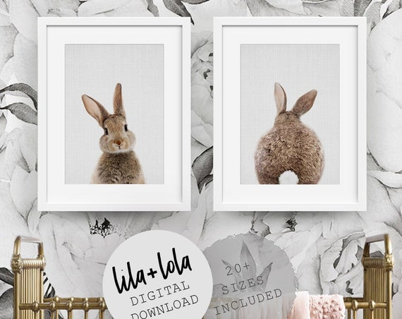 Bunny Rabbit Print Set - Digital Download