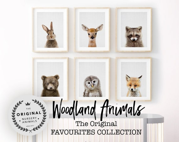 Woodland Baby Animal Print Set - Digital Download