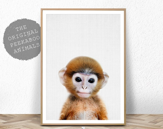 baby monkey print nursery animal wall art safari decor printable nursery animals