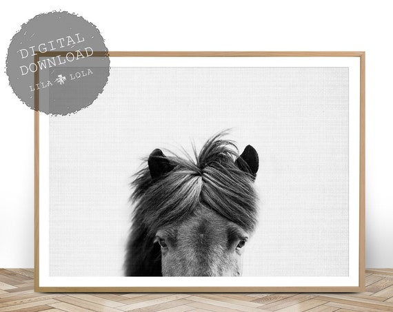Printable Wall Art, Horse Print, Black and White Photo, Instant Digital Download, Horse Photography, Large Poster Print, Equestrian Art