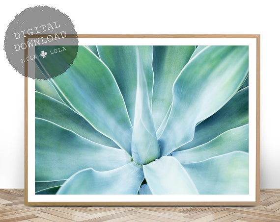 Succulent Print, Instant Digital Download, Printable Wall Art, Agave Plant, Botanical Print, Tropical Decor, Succulent Poster, Teal Green