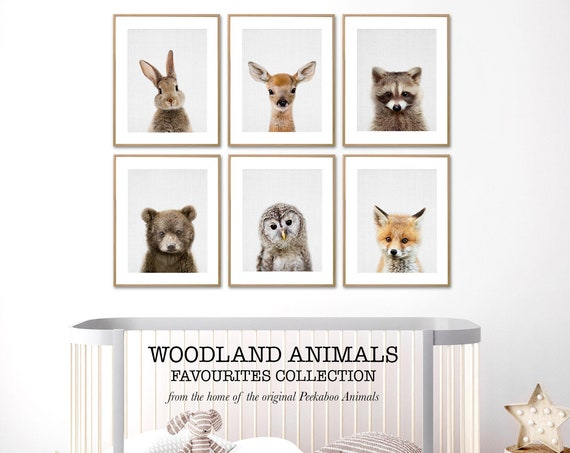 Baby Animals Woodland Nursery Decor, Printable Wall Art, Instant Digital Download, Prints Set, Kids Room or Playroom Posters