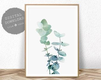 Australian Eucalyptus Leaf Print, Leaf Wall Art, Printable Poster, Plant Photography, Modern Botanical Plant Print, Digital Download