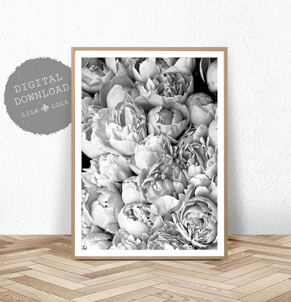 Peony Print, Peonie Wall Art, Printable Photography, Black and White, Digital Download, Bedroom Decor, Floral Poster, Peony Printable
