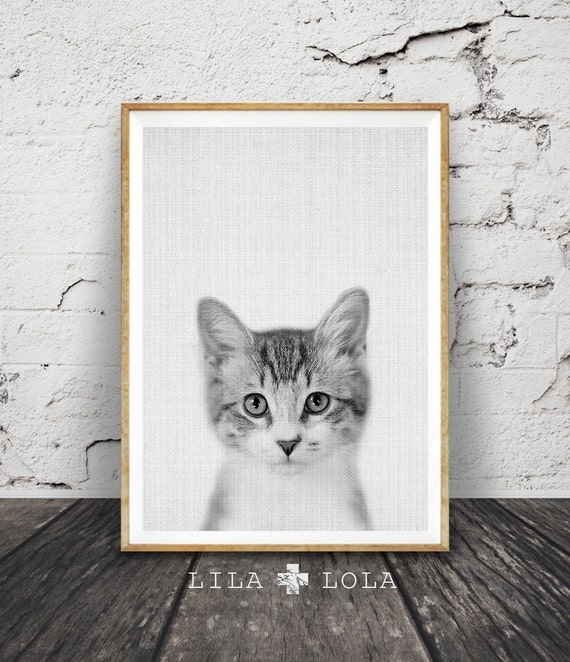 Kitten Print, Nursery Baby Animal Wall Art, Large Poster, Digital Download, Modern Minimalist Decor, Cat Photo, Cute Kitten, Black and White