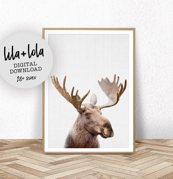 Moose Print - Digital Download