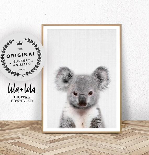 Baby Koala Print - Digital Download