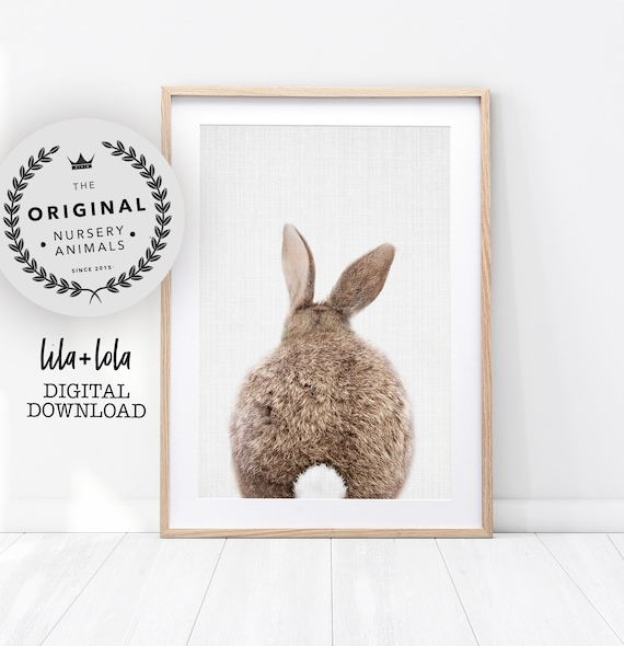 Bunny Rabbit Tail Print - Digital Download