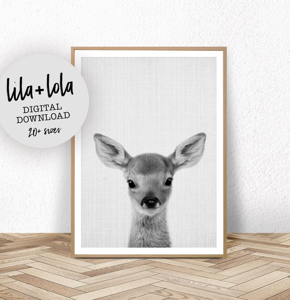 Baby Deer Print - Digital Download
