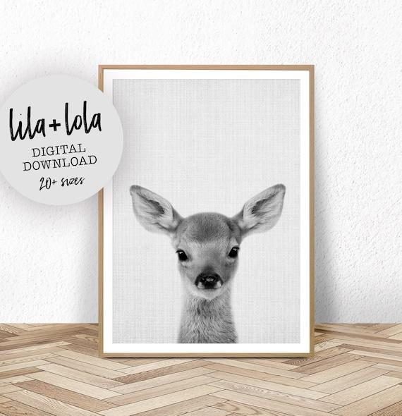 Baby Deer Print - Digital Download