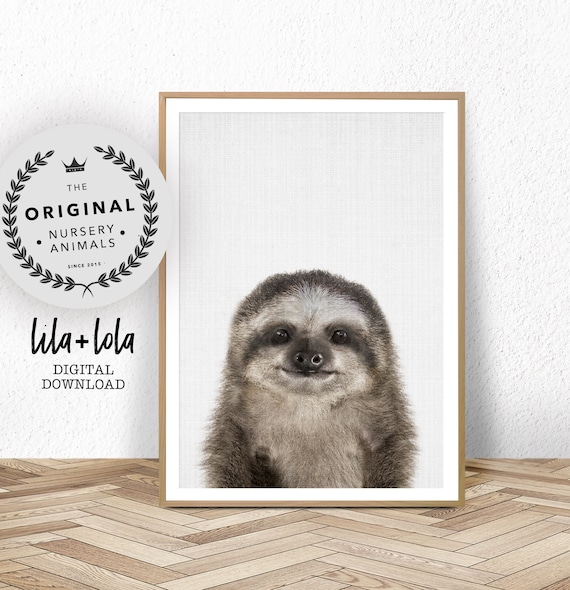 Baby Sloth Print - Digital Download