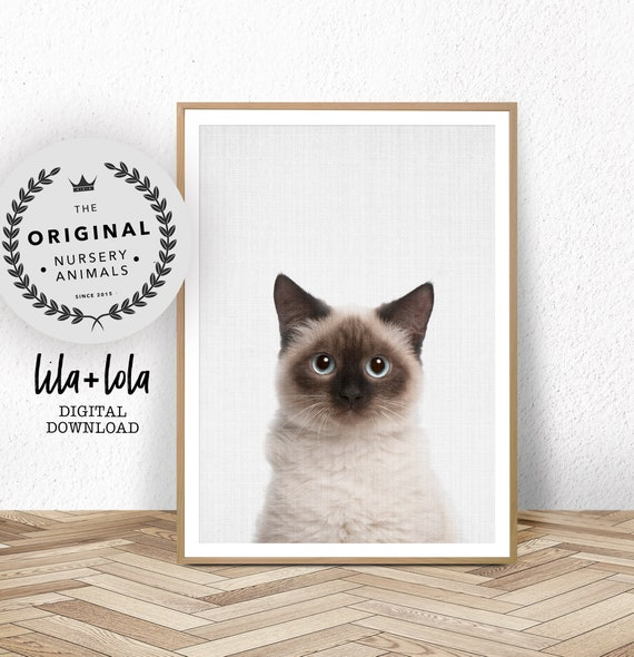 Birman Cat Print - Digital Download
