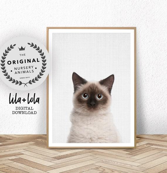 Birman Cat Print - Digital Download