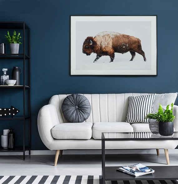 Buffalo Photography, South Western Decor, Bison Print, Digital Download, Large Wall Art, Modern Wall Art, Wilderness Photography