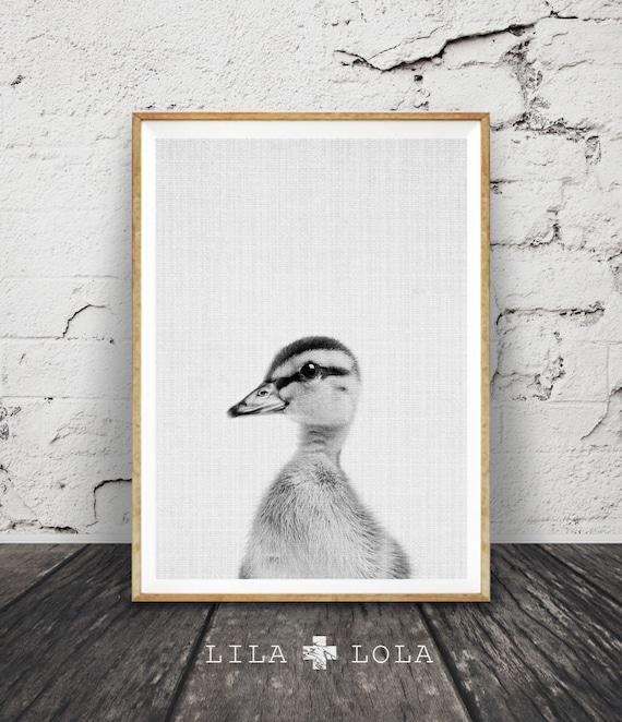 Duckling Print, Baby Duck Photo, Nursery Farm Animal Wall Art, Black, White and Grey Decor, Printable Poster, Modern Minimalist, Farmhouse