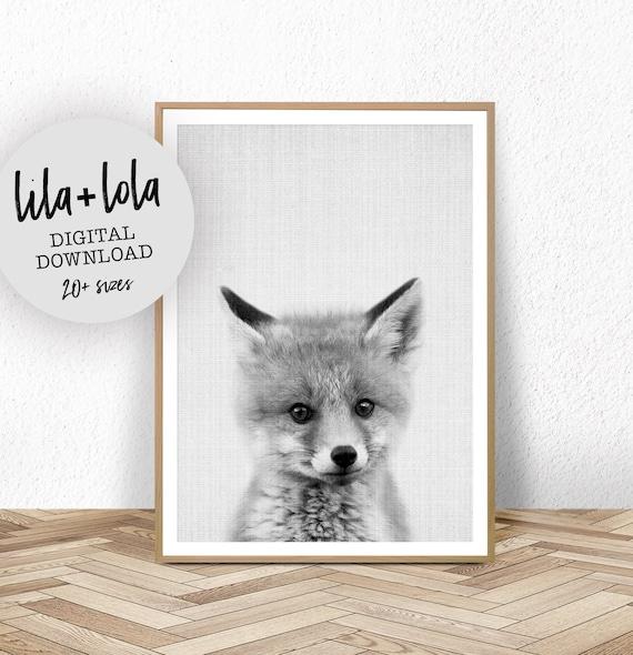 Baby Fox Print - Digital Download