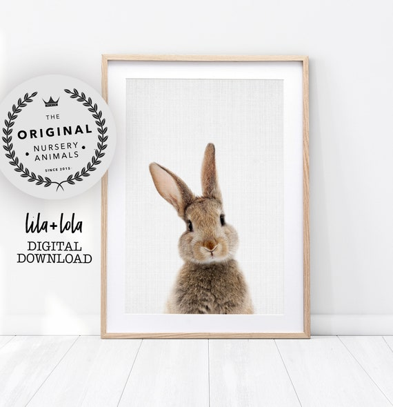 Bunny Rabbit Print - Digital Download