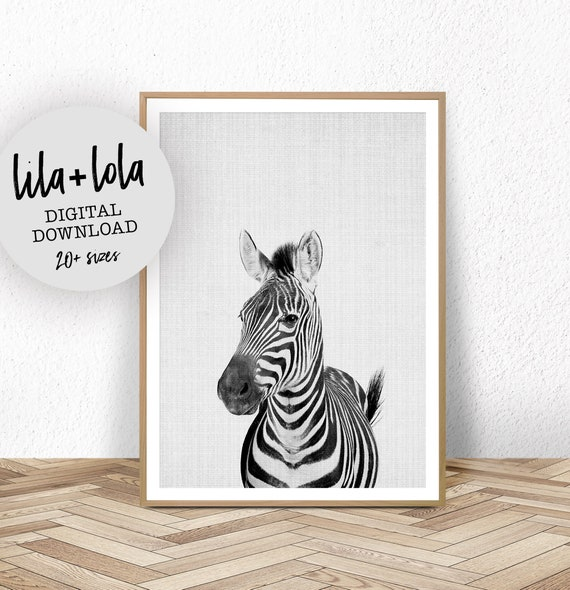 Zebra Print - Digital Download