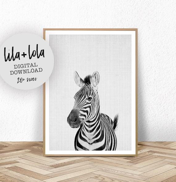 Zebra Print - Digital Download