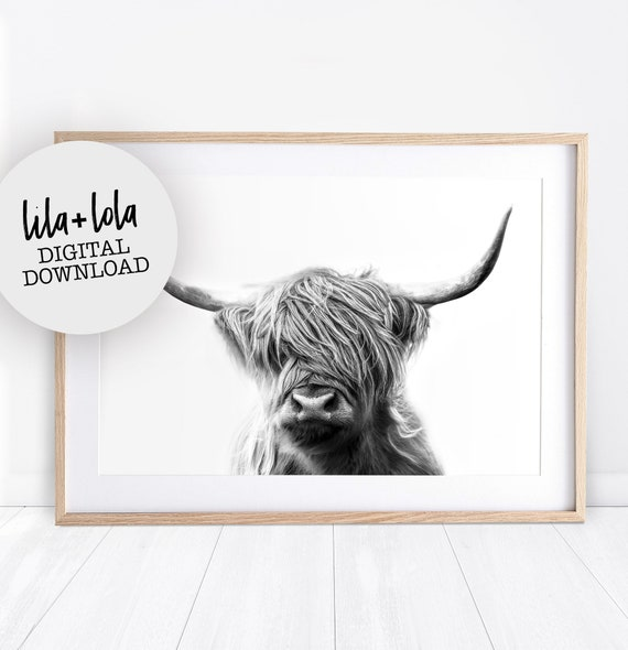 Highland Cow Print - Digital Download