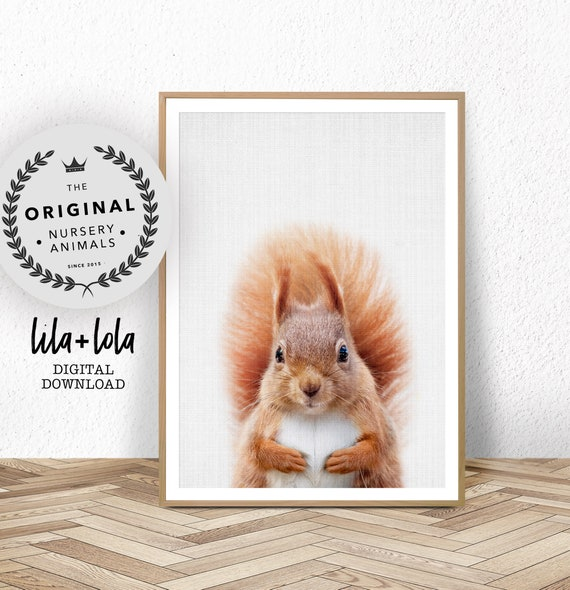 Squirrel Print - Digital Download