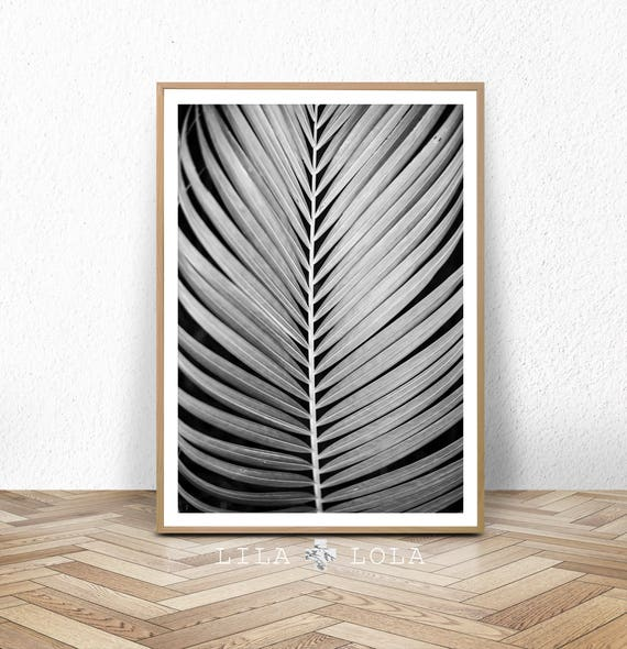 Black and White Wall Art Poster, Palm Leaf Print, Plant Photo, Minimalist Tropical Poster, Printable Digital Download, Palm Tree Leaf Print
