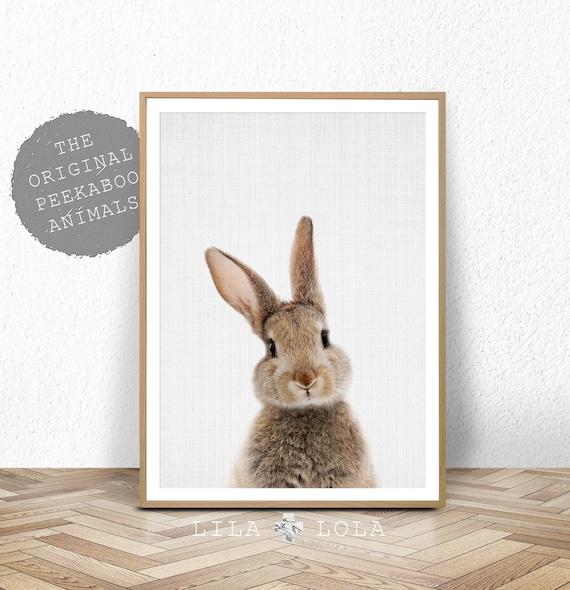 Nursery Bunny Print, Printable Animal, Rabbit Wall Art Poster, Woodland Decor, Baby Shower, Digital Download, Modern Baby Room Bunny Rabbit