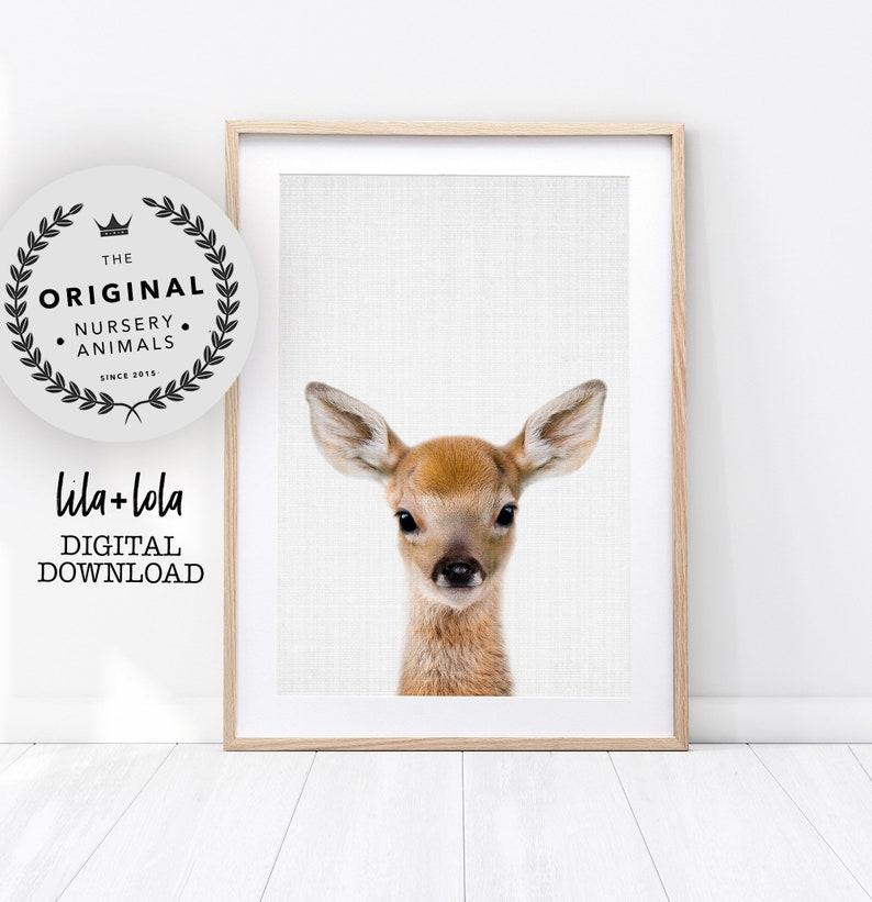 Deer Print Woodland Animals Nursery Wall Art Decor Baby image 0