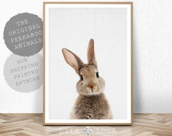 Nursery Bunny Rabbit Print, Wall Art Decor, Printed and Shipped, Woodland Animal Posters, Baby Shower Decoration, Peekaboo Forest Animals