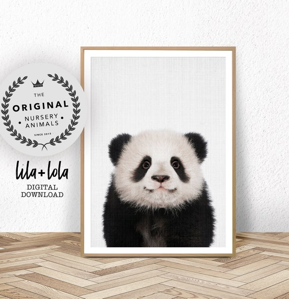 Baby Panda Print - Digital Download