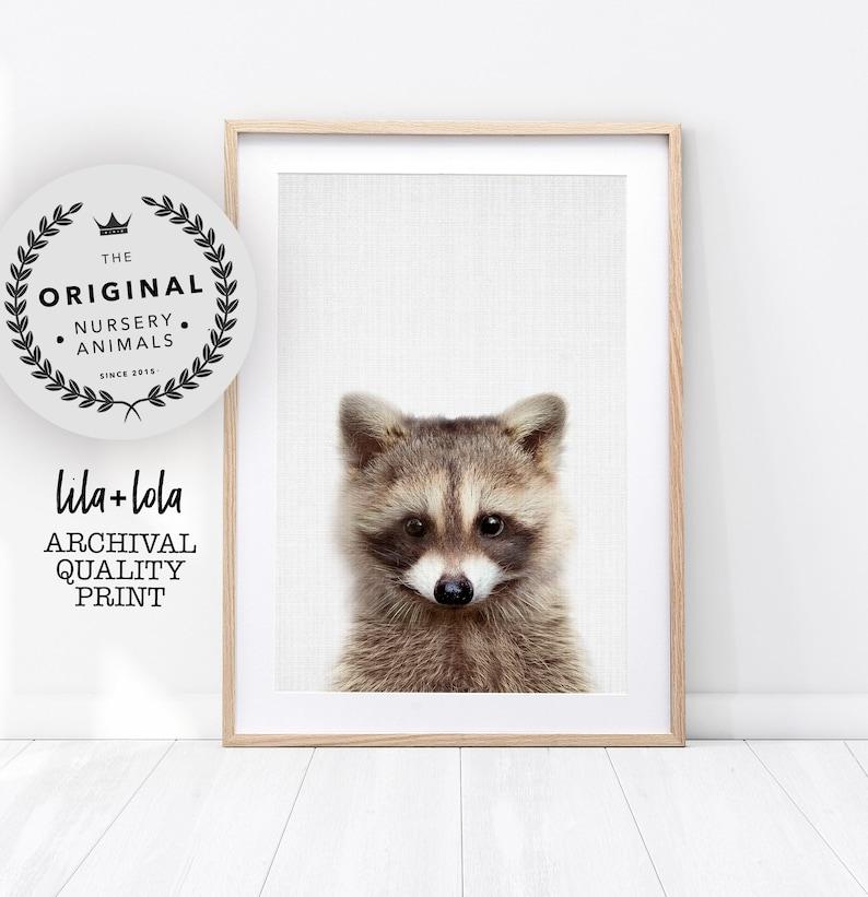 Nursery Animal Print Raccoon Baby Wall Art Woodland Decor image 0