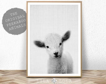 Lamb Print, Baby Sheep Wall Art, Nursery Animal, Digital Download, Farm Decor, Printable Farmhouse Sheep, Large Poster, Black and White