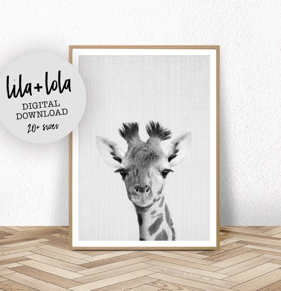 Baby Giraffe Print - Digital Download