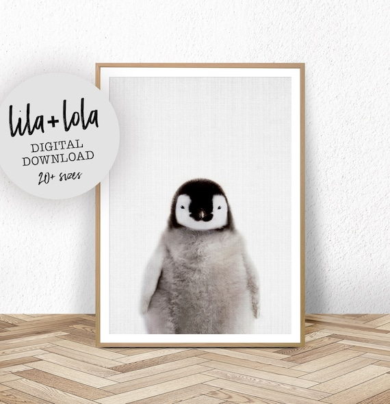 Baby Penguin Print - Digital Download