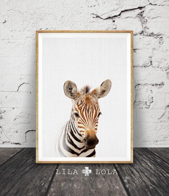 Safari Nursery Wall Art Zebra Print Babies Room Decor Kids   Etsy