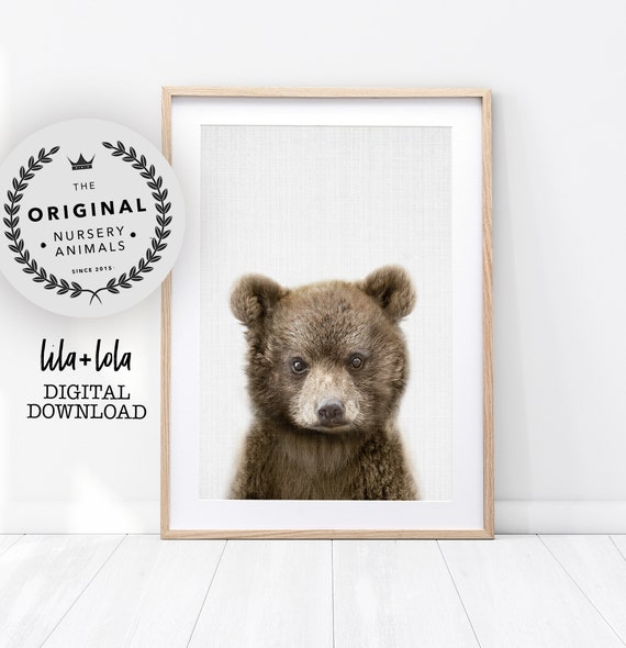 Baby Bear Nursery Print - Printable Wall Art - Woodland Animal Decor, Babies Boys Room Poster, Kids Wall Art