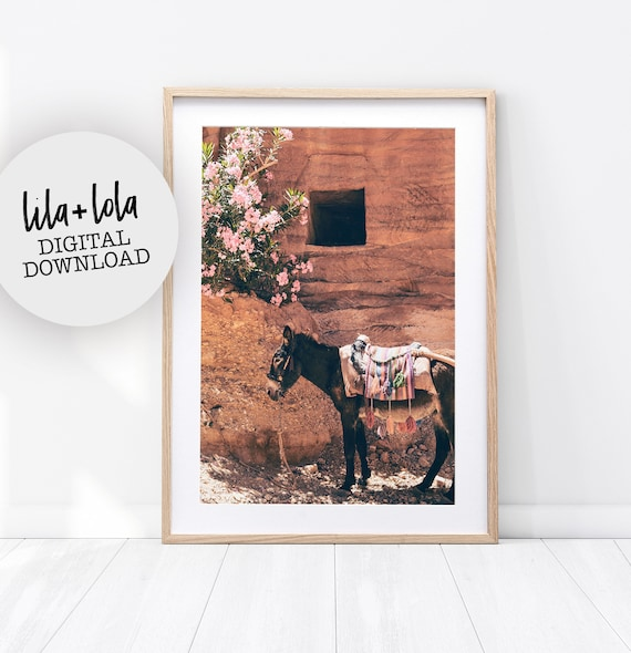 Darling Donkey Print - Digital Download