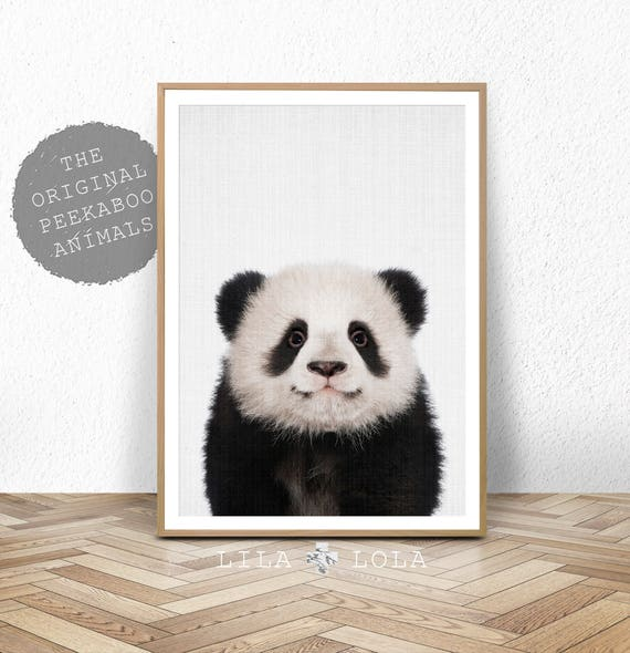 Panda Print, Baby Nursery Animals Wall Art, Panda Bear Cub, Nursery Decor, Large Printable Poster, Digital Download, Baby Animal Photo