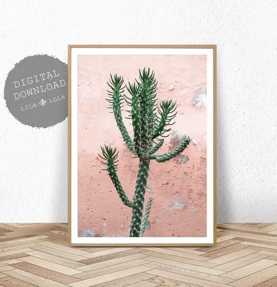 Cactus Wall Art Print, Digital Download, Instant Printable, Modern Boho Decor, Bohemian Home Minimalist, Pink and Green Photography, Photo
