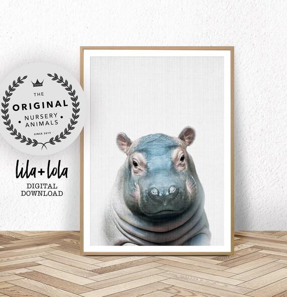 Baby Hippo Print - Digital Download