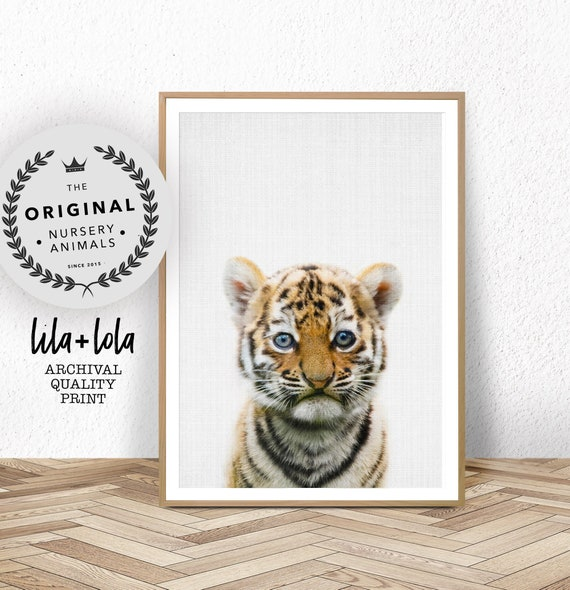 Tiger Print, Baby Animal Wall Art, Safari Nursery, Large Wall Art, Babies Room Poster, Printable Nursery Tiger Cub Safari