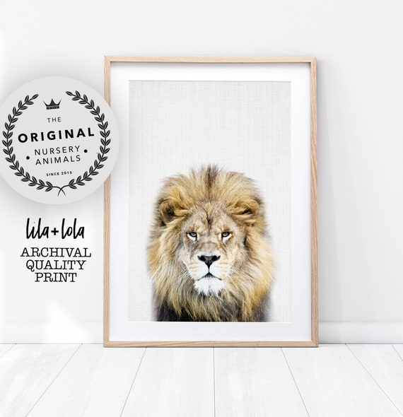 Lion Print - Printed and Shipped