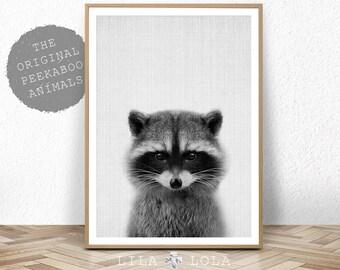 Racoon Print, Nursery Decor, Baby Shower, Animal Photo, Woodland Animal Wall Art, Digital Download, Large Printable Poster, Black and White