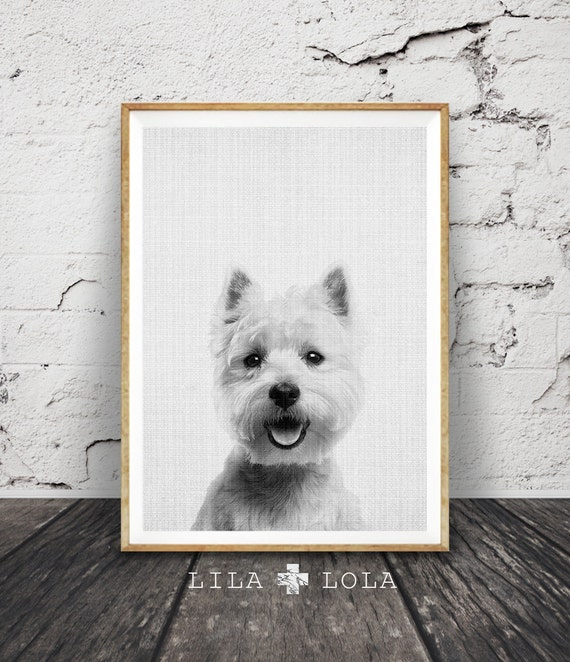 West Highland White Terrier Print, Dog Wall Art Photo, Printable Poster Digital Download, Nursery Animal Decor, Modern Minimalist Puppy Gift