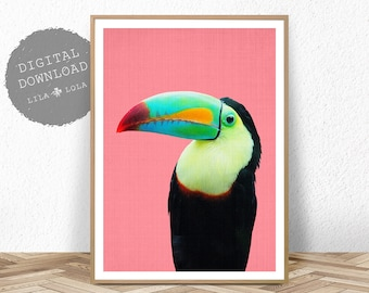 Toucan Bird Print, Printable Wall Art, Tropical Parrot Decor, PrintableDigital Download, Bright Colourful Large Poster, Kids Room Bedroom