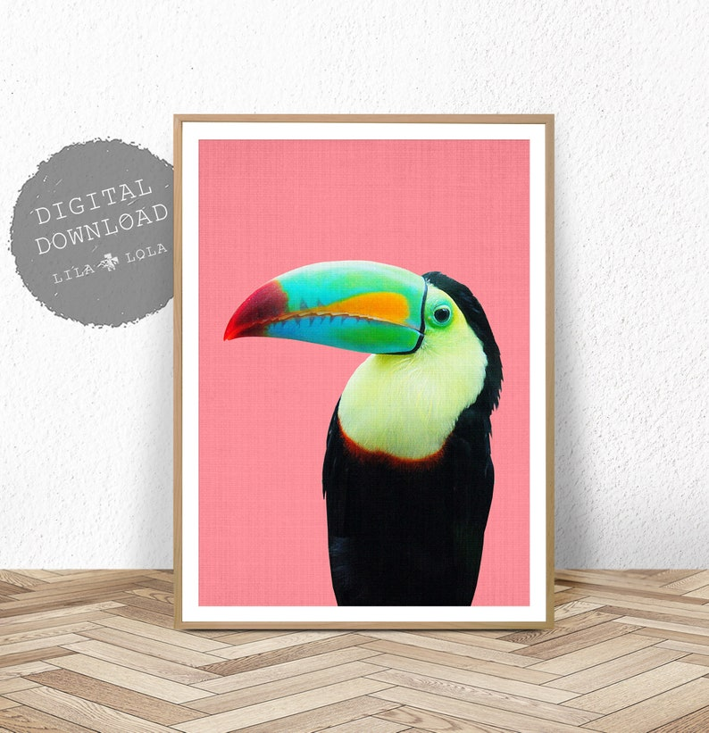 graphic relating to Etsy Printable Wall Art called Toucan Fowl Print, Printable Wall Artwork, Tropical Parrot Decor, PrintableDigital Obtain, Vivid Colorful Major Poster, Little ones House Bed room