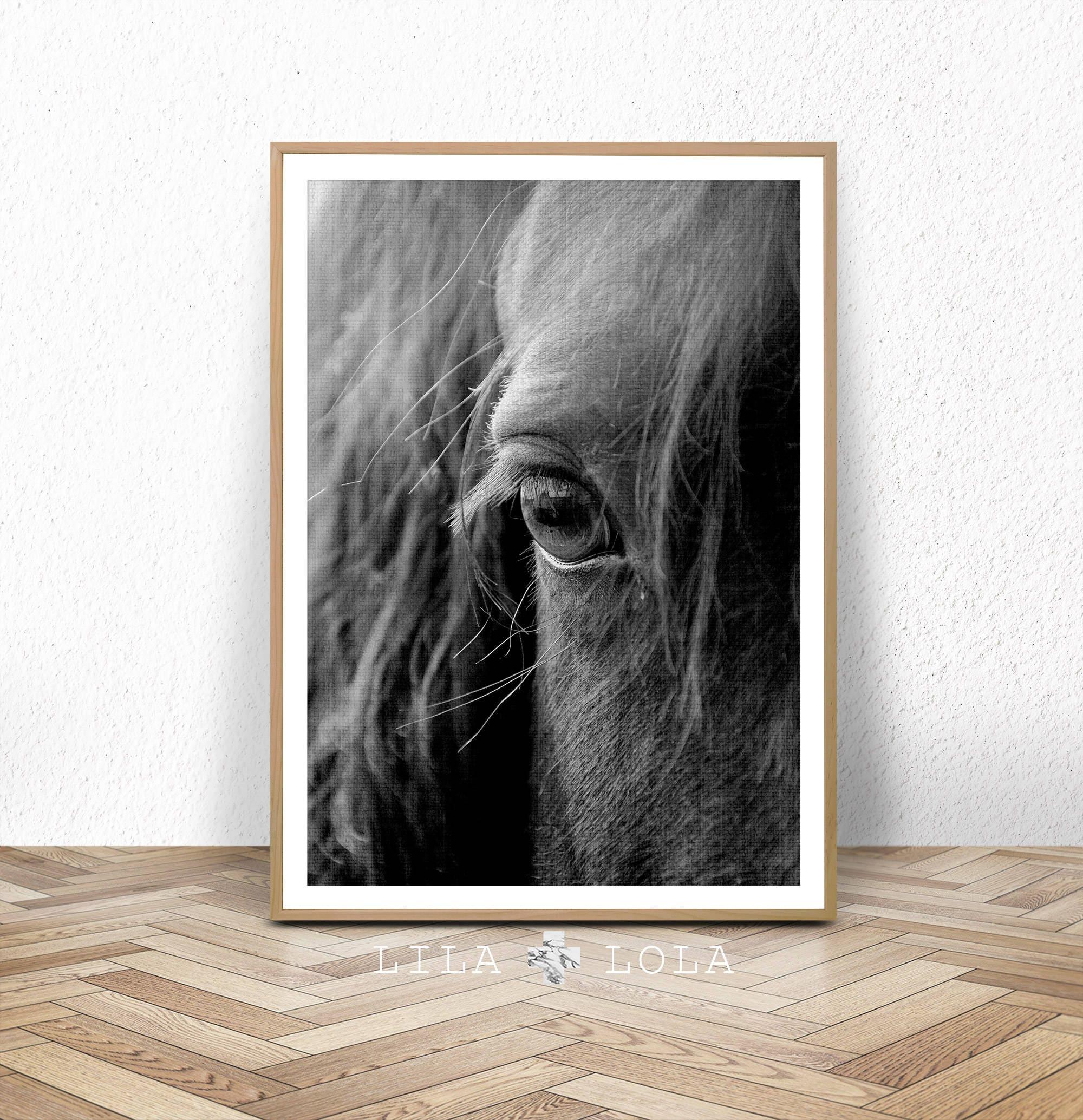 Horse Print, Horse Eye Photo, Black and White Photography